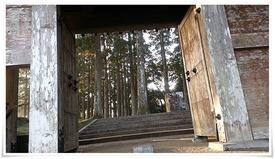 飫肥城本丸跡の飫肥杉