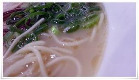 スープはしろ@元祖熊本ラーメン こだいこ