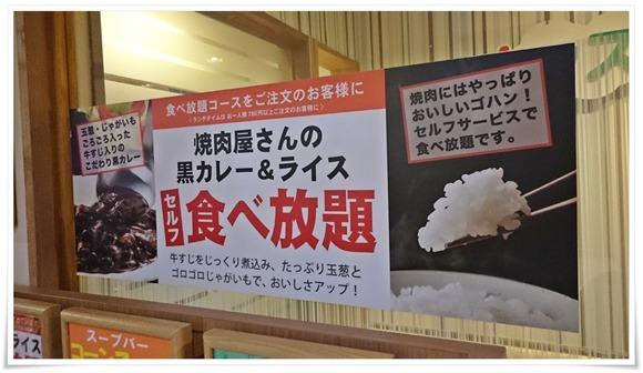 黒カレーが旨い@じゅうじゅうカルビ