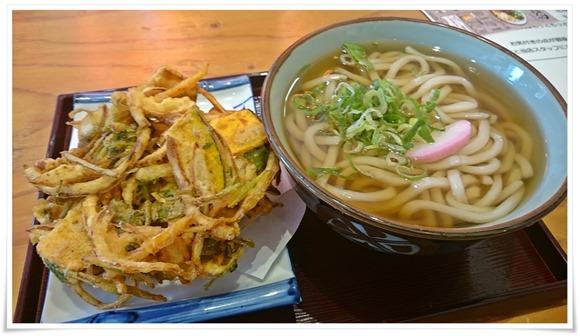 かき揚げうどん@鶏麺茶屋