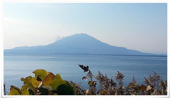 噴煙を上げている桜島@鹿児島