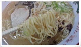 ツルツル麺@力(ちから)ラーメン