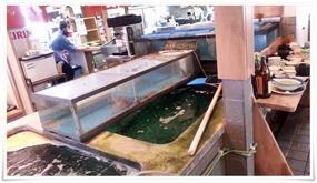店内の水槽@和風レストランやひろ