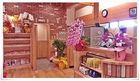 お花の数々@コメダ珈琲 北九州桃園公園店