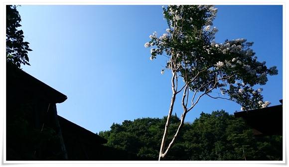 青空が拝める露店風呂@旅館やまの湯