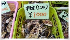 中粒1.3kg1000円@永田カキ直売所